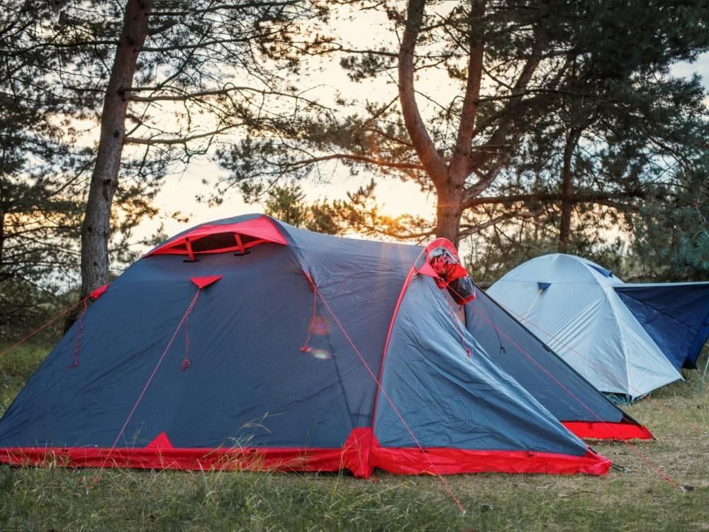blue tents at dawn