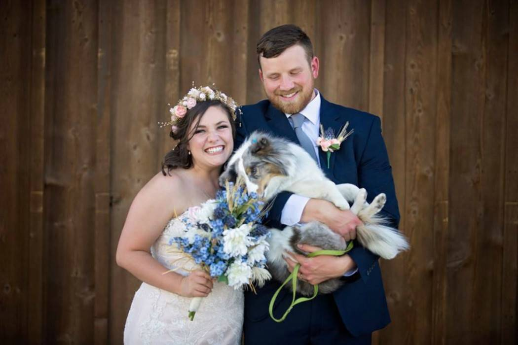 Bride, groom and their dog taking a photo in front of one of our barns