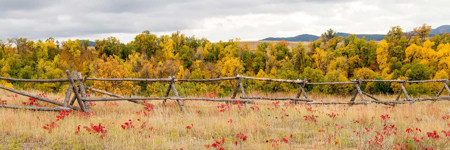 Elkhorn Ridge landscape